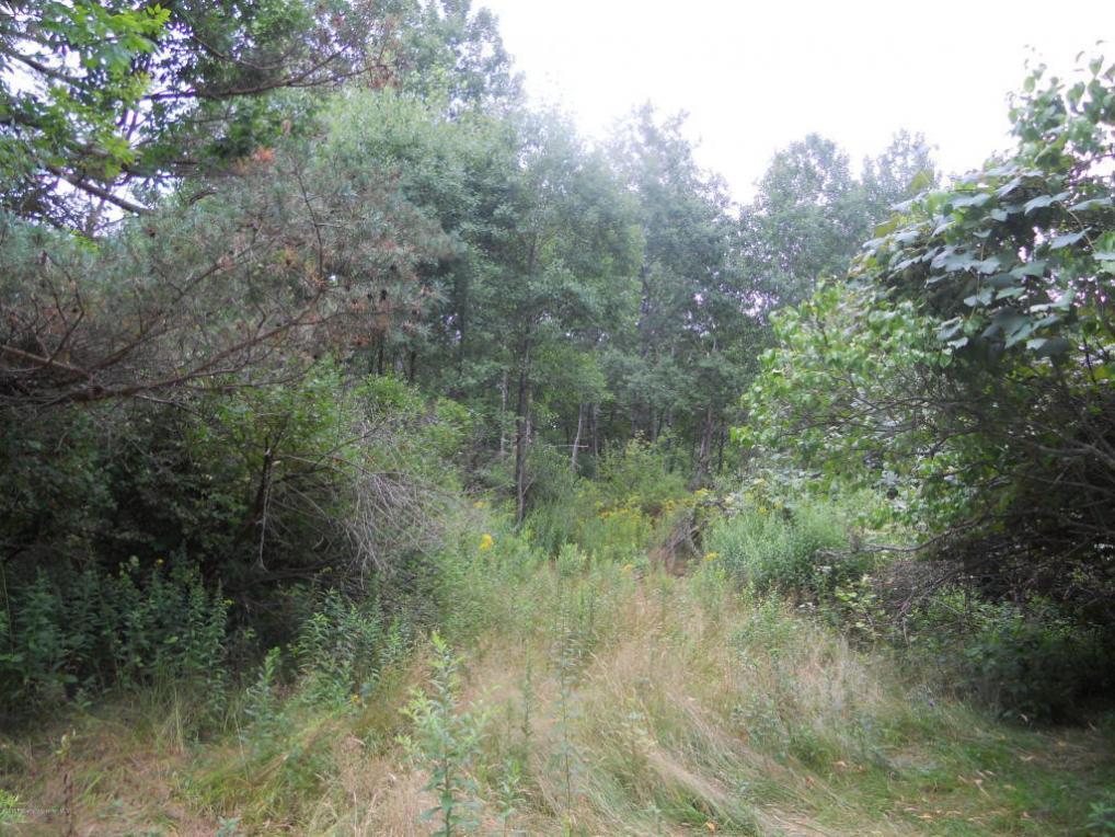 Gravel Pond Rd, Glenburn Twp, PA 18411