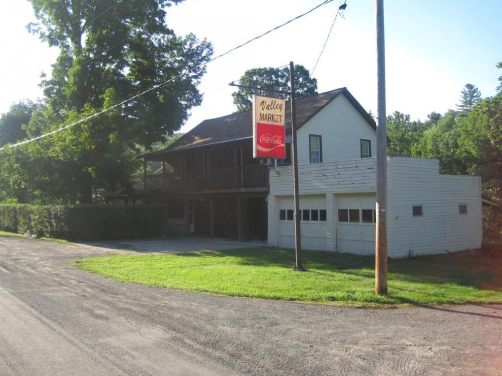 4263 Starrucca Creek Road, Susquehanna, PA 18847