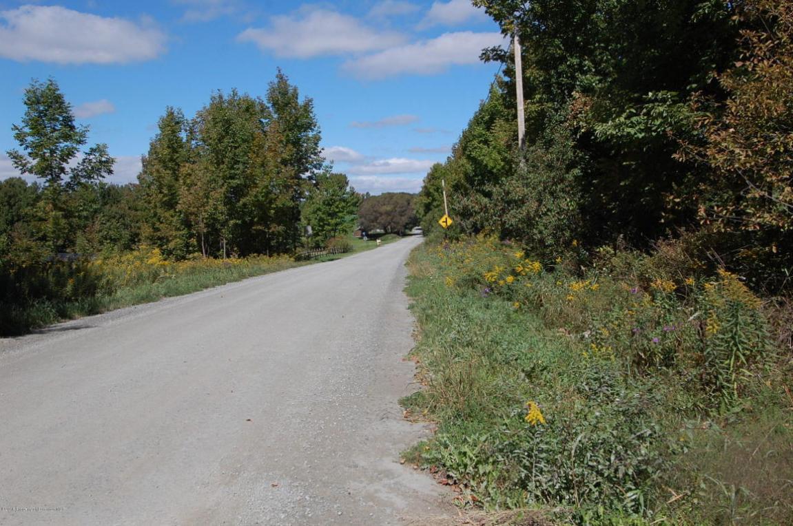 Elkdale Road, Clifford Twp, PA 18470
