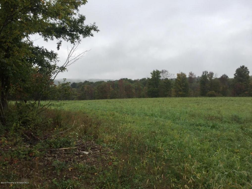 Lot 4 Airport Road, Newton Twp, PA 18411