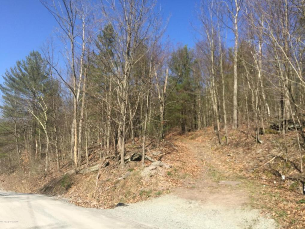 Coolbaugh Mountain Rd, Exeter Twp, PA 18615
