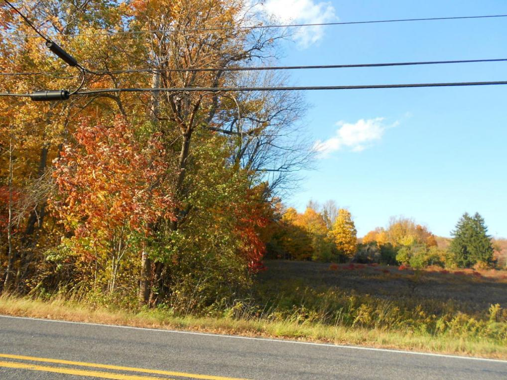 State Route 690 & 307, Spring Brook Twp, PA 18444