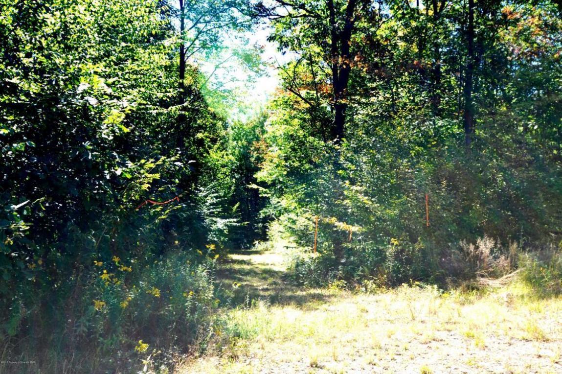 Lot#78 Summit Woods Rd, Roaring Brook Twp, PA 18444