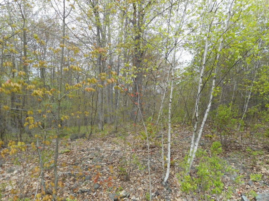 Lot 34 Martin, Browndale, PA 18421