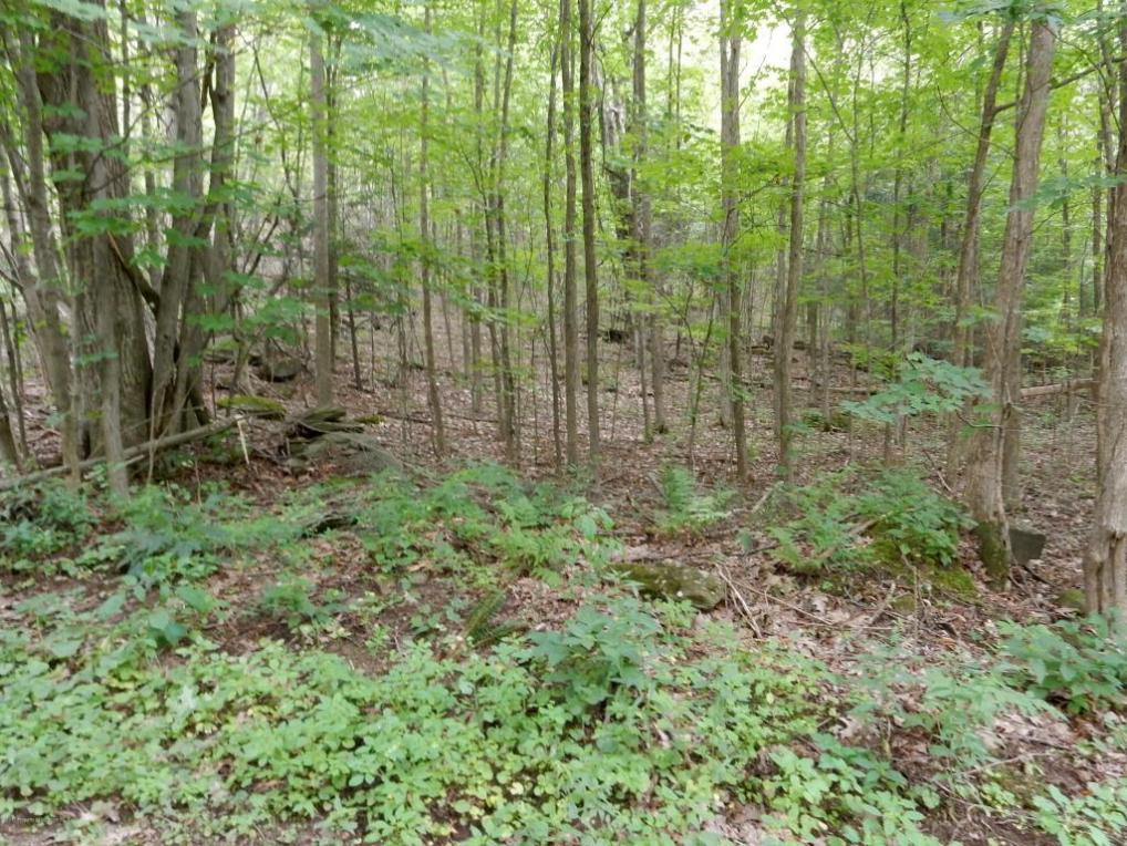 Lot 1 Bell Mountain Rd, Greenfield Twp, PA 18407