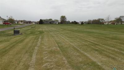 Photo of Golf 2,5,6,7,8,9 Dr, Wentworth, SD 57075