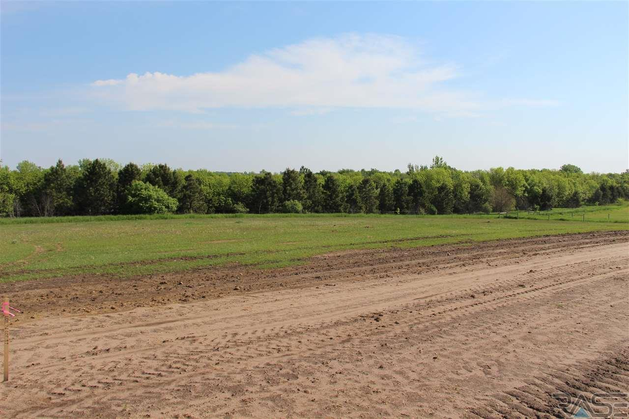 Mls 21702903 Pony Meadow Ct Renner Sd 57055