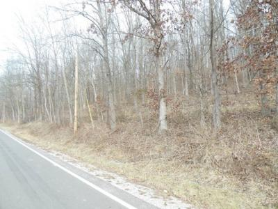 Photo of Wakefield Mound Road, Piketon, OH 45661