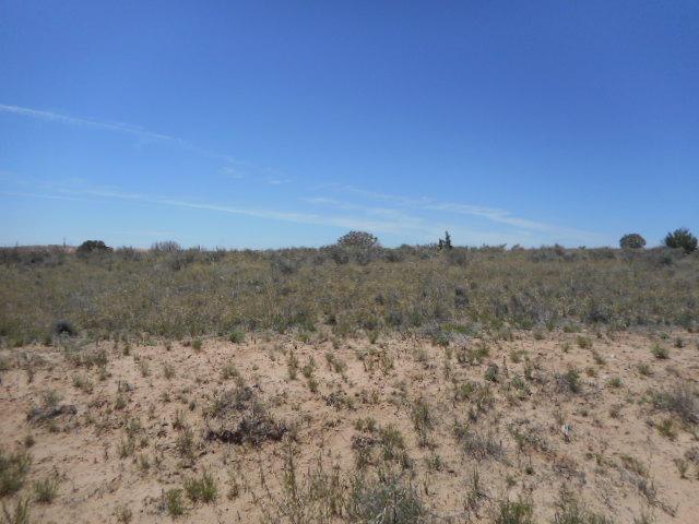 Cardomon (u21b61l3), Rio Rancho, NM 87124