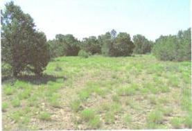 275 Federal Forest NE, Mountainair, NM 87036