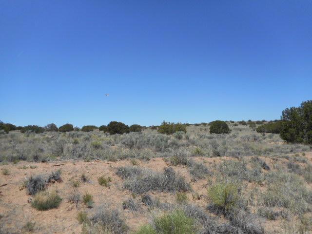 Shale (u21b79l 3), Rio Rancho, NM 87124