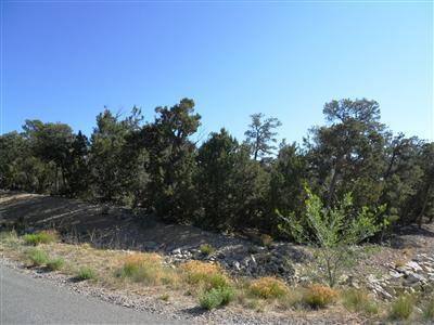 195 Via Sedillo Road, Tijeras, NM 87059