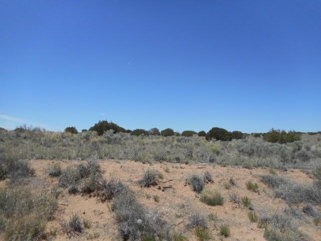 Cardomon (u21b61l1) Road NE, Rio Rancho, NM 87124