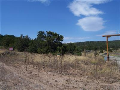 Sunny Dale Road, Edgewood, NM 87015