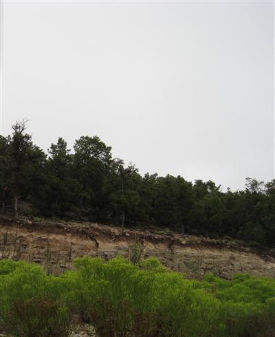 92 Sandia Mountain Ranch Drive, Tijeras, NM 87059