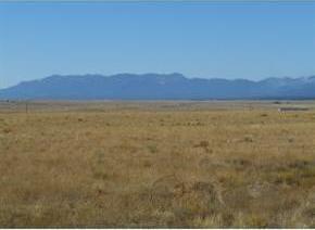 Gates Farm, Mcintosh, NM 87032