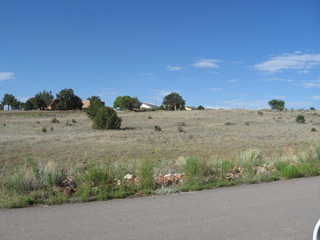 17 Joe Nestor Road, Edgewood, NM 87015