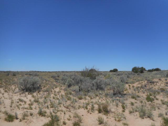 1012075210 Ginger (u25b71l4), Rio Rancho, NM 87124