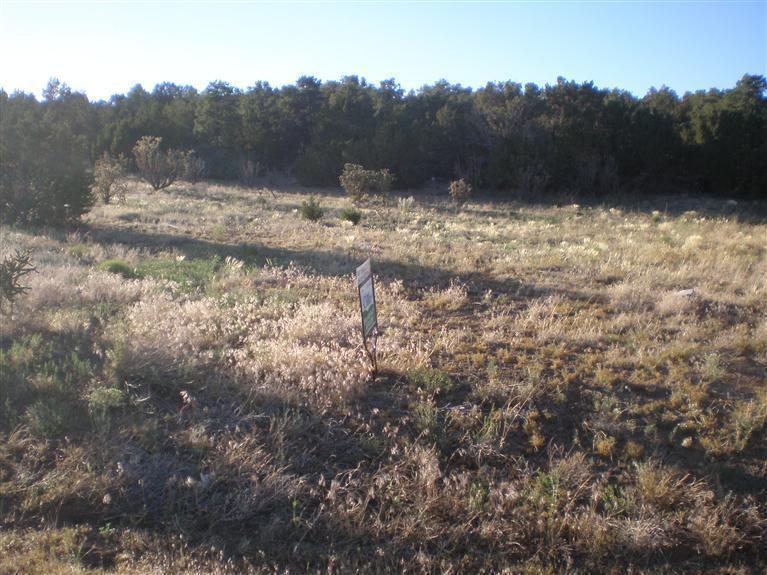 35 Camino Collado, Edgewood, NM 87015