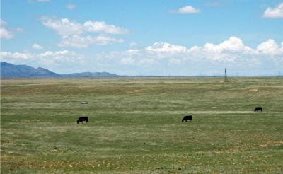 Photo of 4049 Nm-41, Stanley, NM 87056