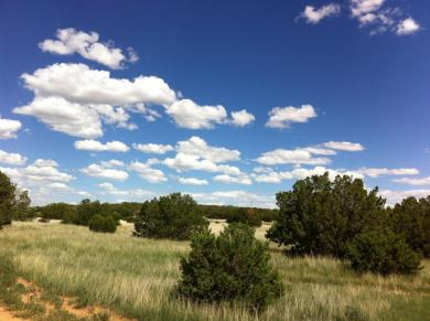 Linda Vista Drive, Estancia, NM 87016