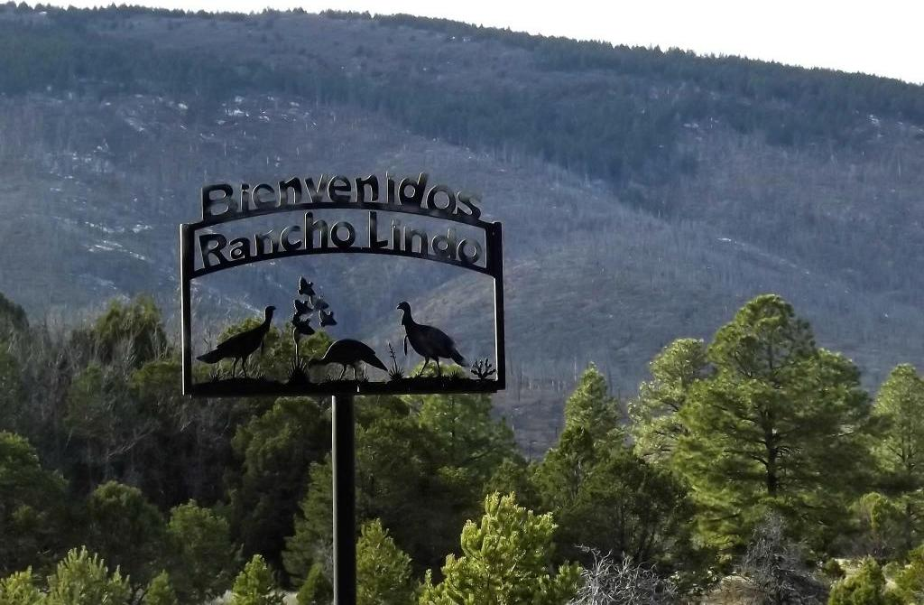248 Los Penetos, Torreon, NM 87016