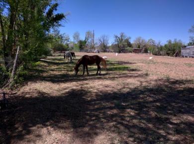 10024 Guadalupe Trail NW, Albuquerque, NM 87114