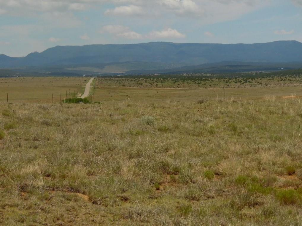 8980 Highway 55, Estancia, NM 87016