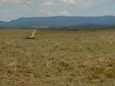 Photo of 8980 Highway 55, Estancia, NM 87016