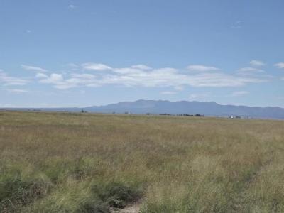 Photo of Langley Rd & Hwy 41, Estancia, NM 87016