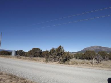 134 Nugent Road, Edgewood, NM 87015