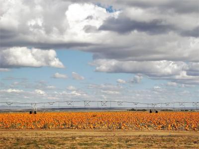 Photo of 70 Akin Farm Road, Estancia, NM 87016