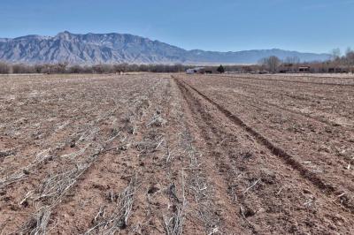 Photo of Trosello Estates Lot 2, Corrales, NM 87048