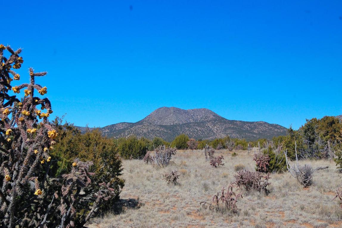 San Pedro Ranch, Edgewood, NM 87015