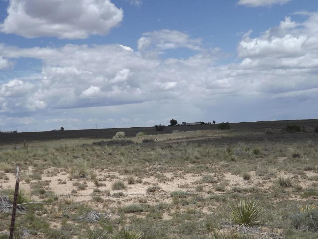 Martinez, Moriarty, NM 87035