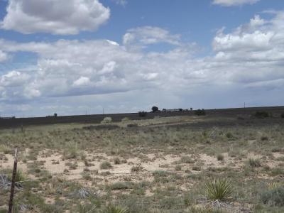 Photo of Martinez, Moriarty, NM 87035