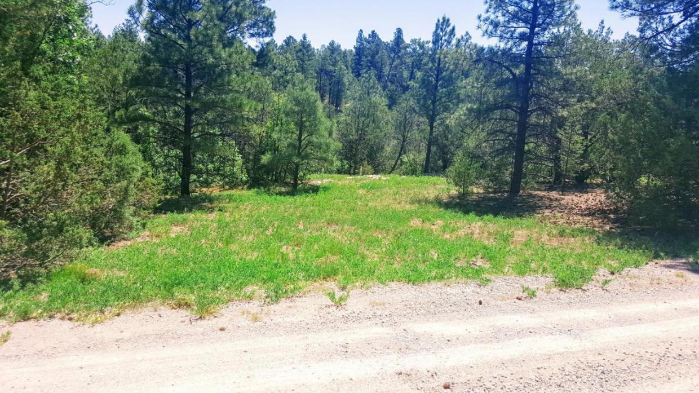 21 Green Carpet Road, Tijeras, NM 87059