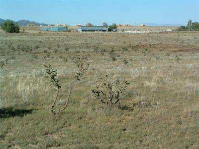Photo of 0 Sunglow Plaza, Unit 6, Edgewood, NM 87015