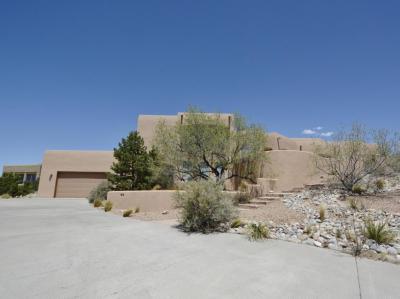 Photo of 204 Camino De Las Huertas, Placitas, NM 87043