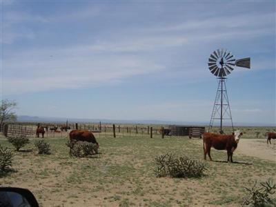 Cordova Ranch, Los Lunas, NM 87031