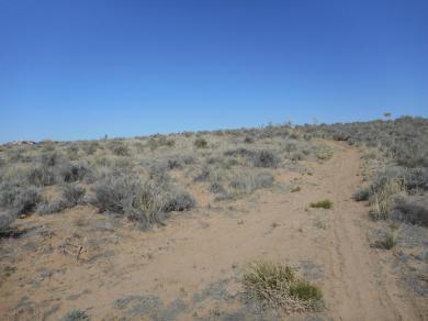 Columbine Rd(u25b23l43or44) NE, Rio Rancho, NM 87144