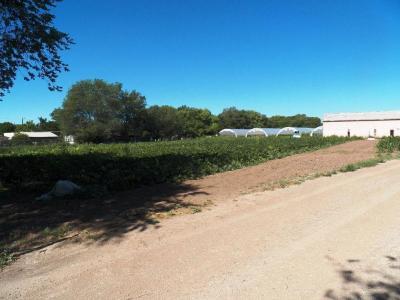 Photo of 7525 Ray Court SW, Albuquerque, NM 87105