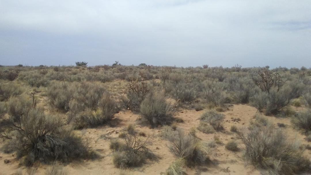 Comstock, Unit22,blk 52,lot 32 NE, Rio Rancho, NM 87144