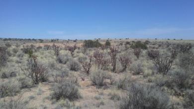Curry, Unit 25, Blk 92, Lot 5 NE, Rio Rancho, NM 87144