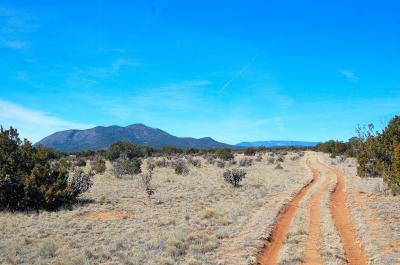 Photo of San Pedro Mountain Ranch, Edgewood, NM 87015