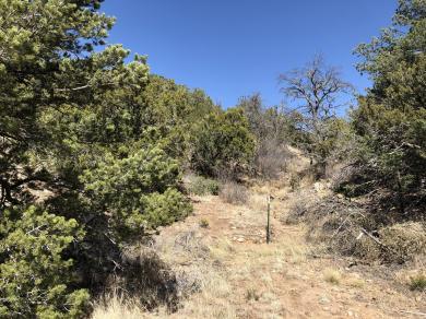 59 Riders Road, Sandia Park, NM 87047