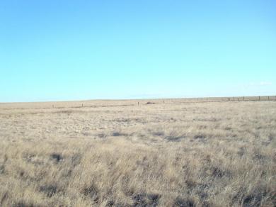 Highway 542, Estancia, NM 87016