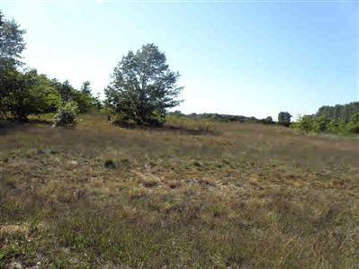 lot10 Trim Lake View Estates, New Era, MI 49446