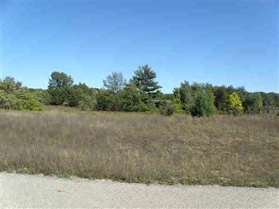 17 Trim Lake View Estates, New Era, MI 49446