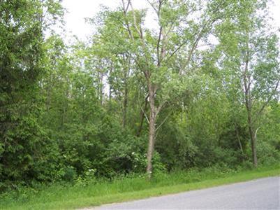 1 Lakeshore Drive, Glenn, MI 49416